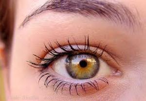 a szem távollátása az hyperopia és myopia és azok korrekciója