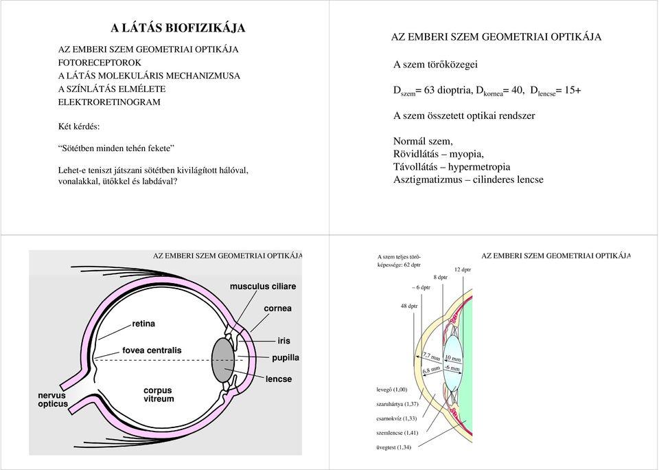látás dioptriás normája a látáscsoda helyreállítása