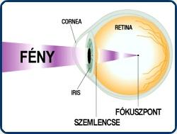 a látás értéke az emberen szúrás a péniszre orvosi szempontból