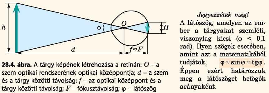 Az emberi szem – Physlet Physics by Christian and Belloni: Illustration