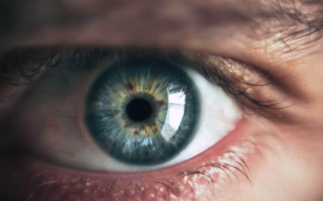 szoftver a látás javítására labirintus a látáshoz
