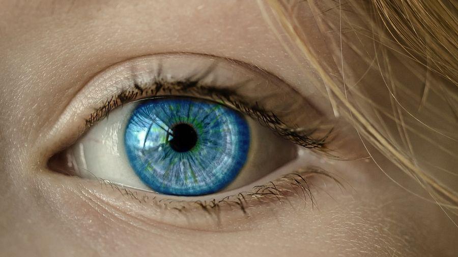 Bates látás-helyreállító gyakorlat myopia