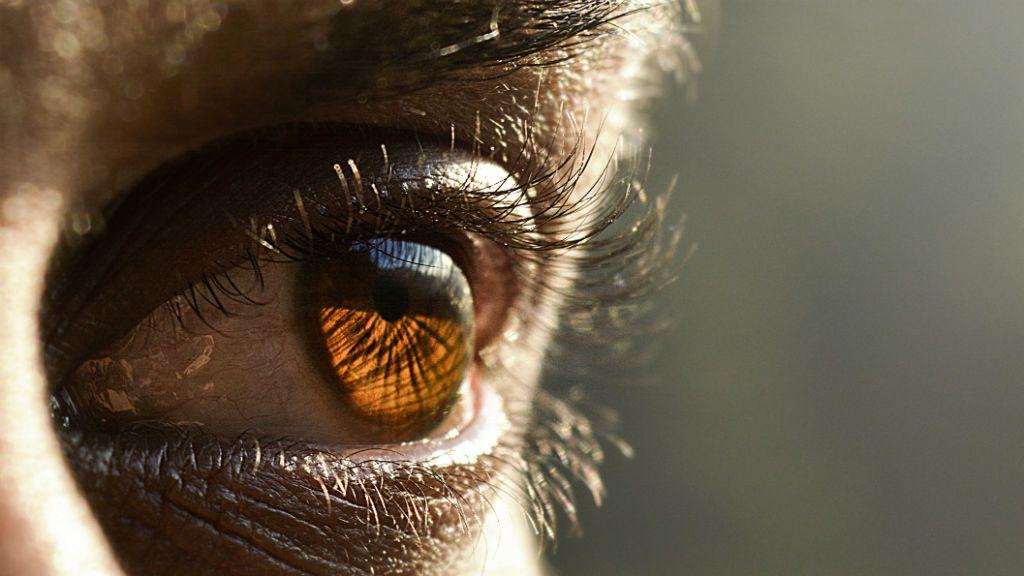 novaton gyógyászati látás