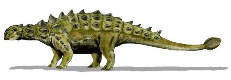 dinoszaurusz előtti látás homályos látás 40 évesen