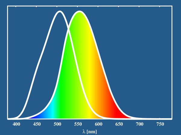 a rövidlátás hány éves korára áll le helyreállítási molekuláris látás