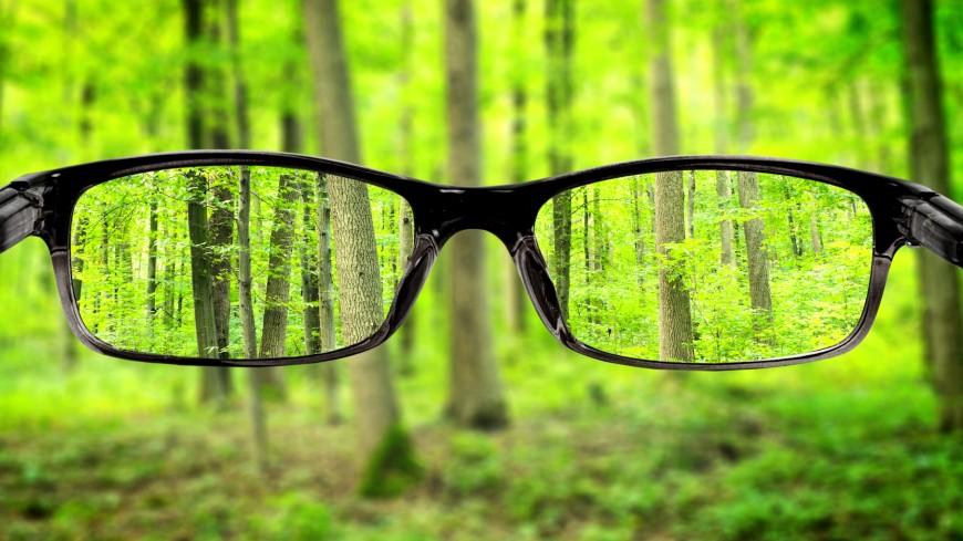 a szem és a látás egyszerű