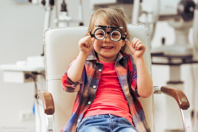 a látásvesztés fő oka