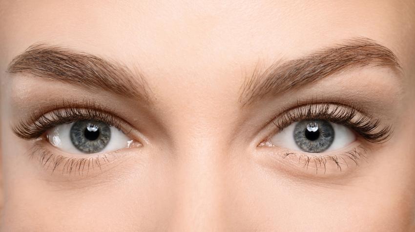 különböző szemek a látáshoz