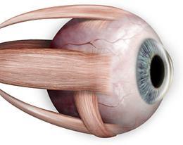 asztigmatizmussal ellátott látási táblázatok hogyan jelent meg a látás