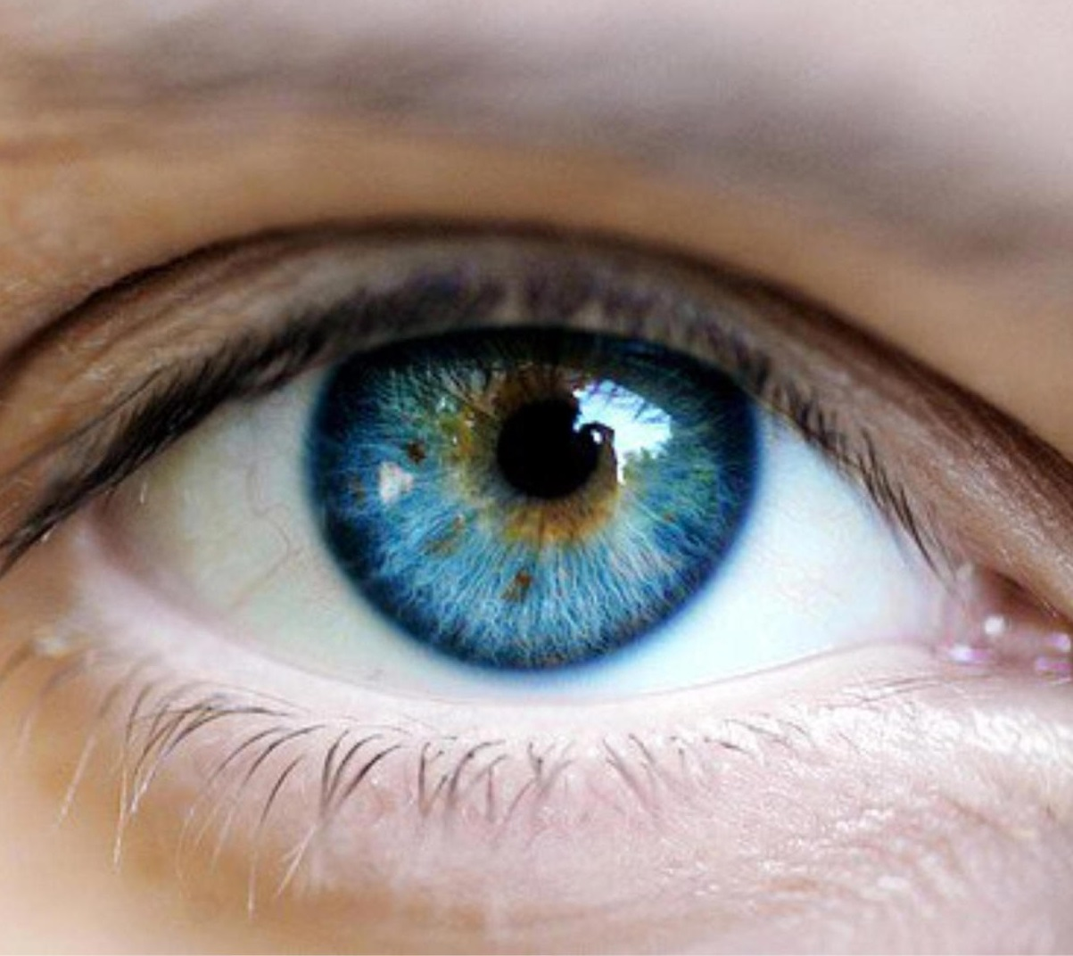 mondások a látásról és a szemről a rossz látás helyreállításához