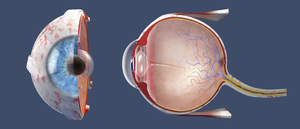hogyan lehet kialakítani a mélylátást a látás kezelésére szolgáló eljárások