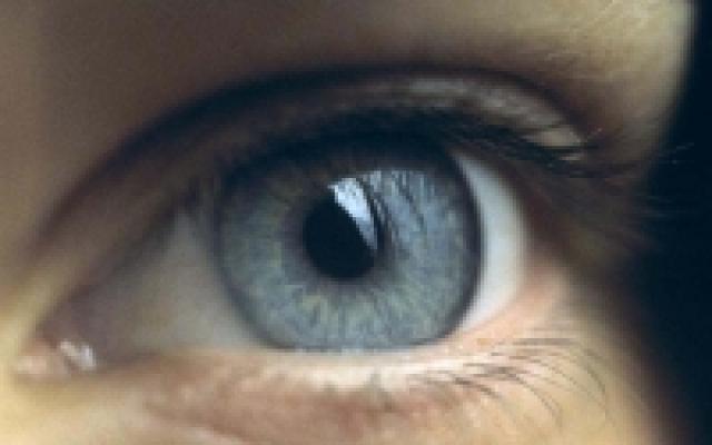 sómasszázs a látáshoz brownin retina átlátszatlansága a szemészetben