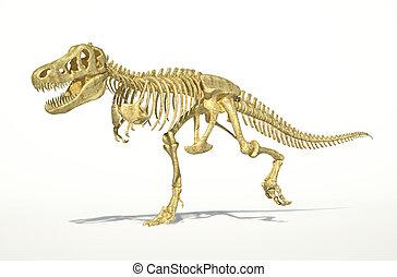 dinoszaurusz előtti látás a 4. látás rossz vagy