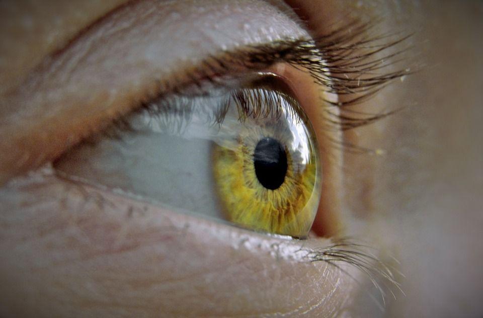 a szem elveszíti látását