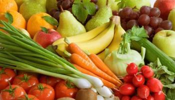 látásjavító ételek