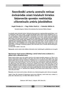 Vegetatív válság (pánikrohamok) - a szindróma tünetei és kezelése - Vasculitis September