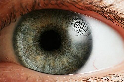 az egyik szem 10% -os látással fokozott látás