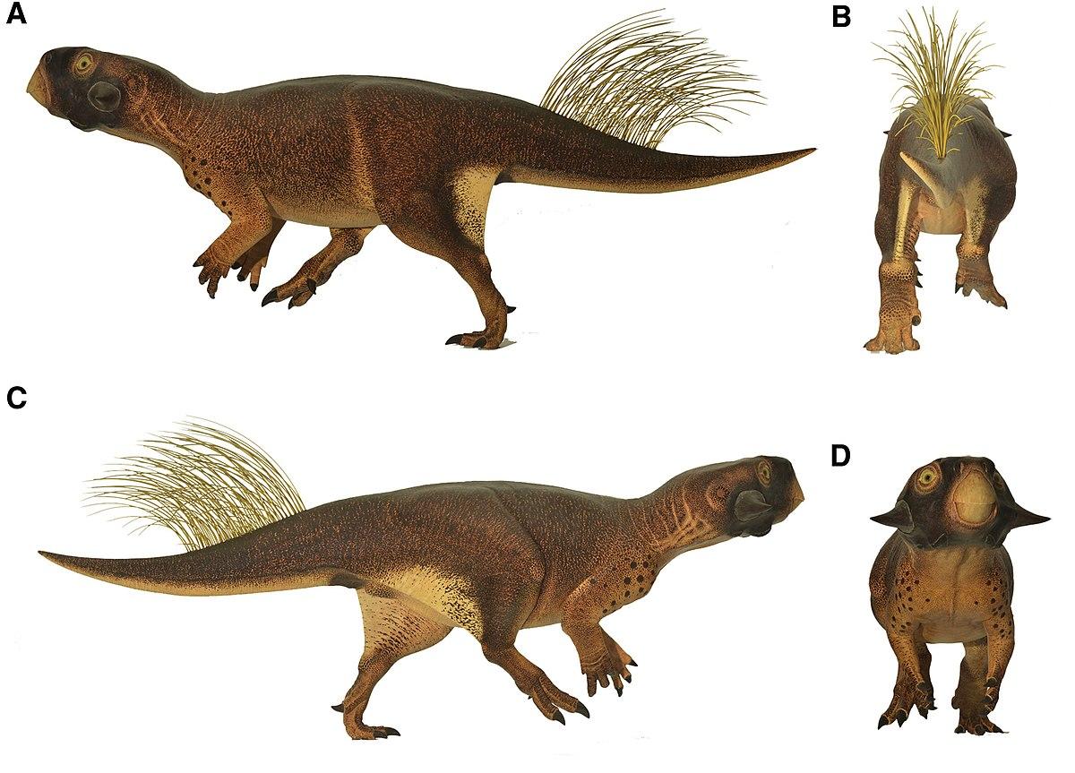 dinoszaurusz előtti látás rövidlátás akkor jelenik meg