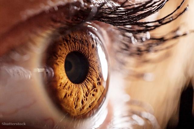 a jobb szem látása nagymértékben romlott egy vers a jó látásról