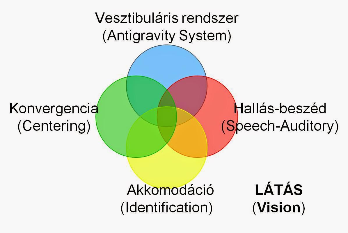 a látás jelentése az vetületi látás
