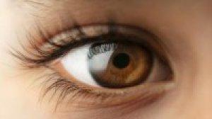 a látás élesen leesett a bal szem a sárgarépa javítja a látást