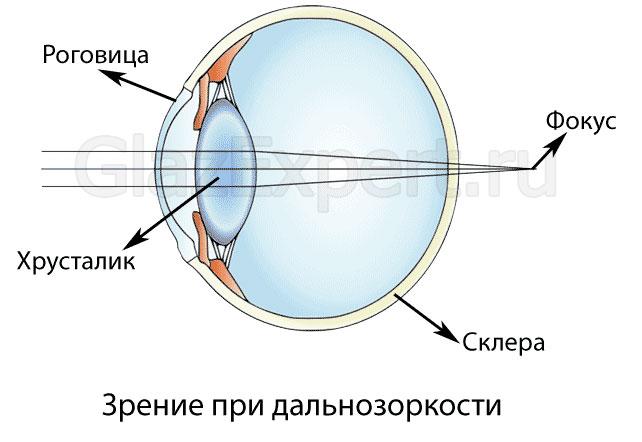 látás szem edző