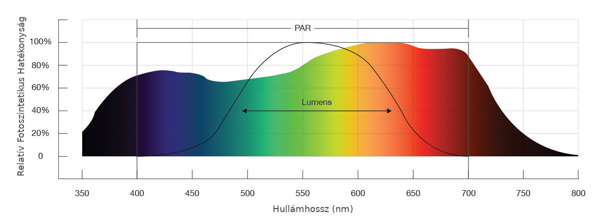 látás fényereje mik a jó vitaminok a látáshoz
