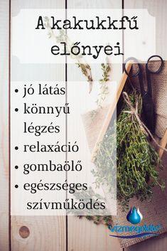 látás herbalife