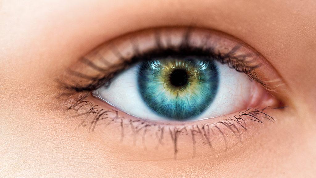 milyen étel helyreállítja a látást